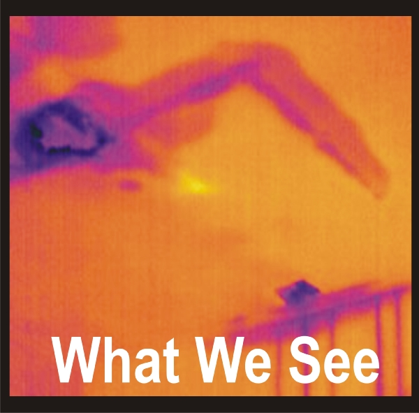 Infrared Moisture Inspection